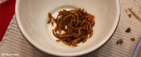 Manger des vers à la texane (Insectes Comestibles)