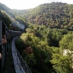 Train dans les gorges du Doux